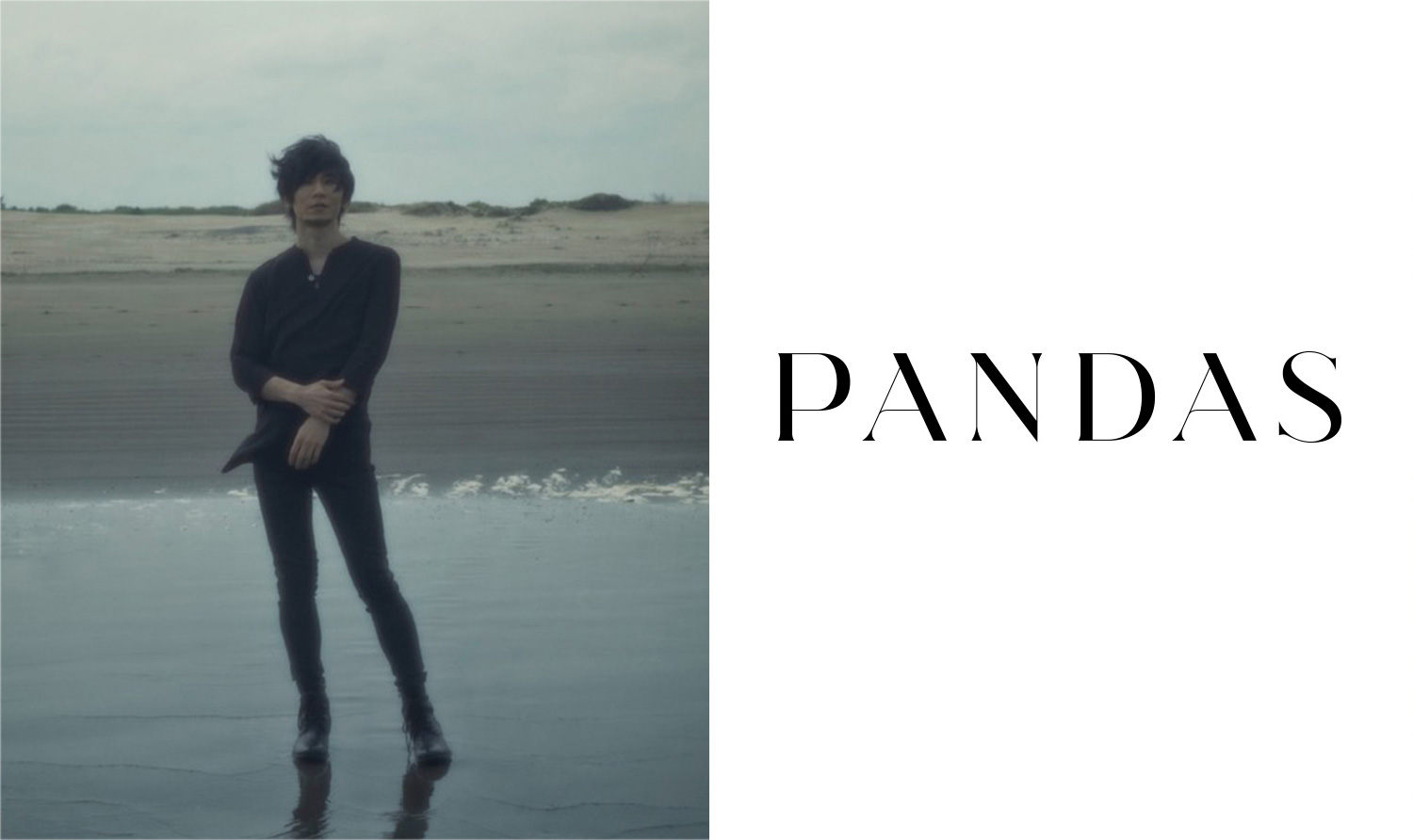 TK from 凛として時雨 /  PANDAS [中野雅之(BOOM BOOM SATELLITES) + TK(凛として時雨)]